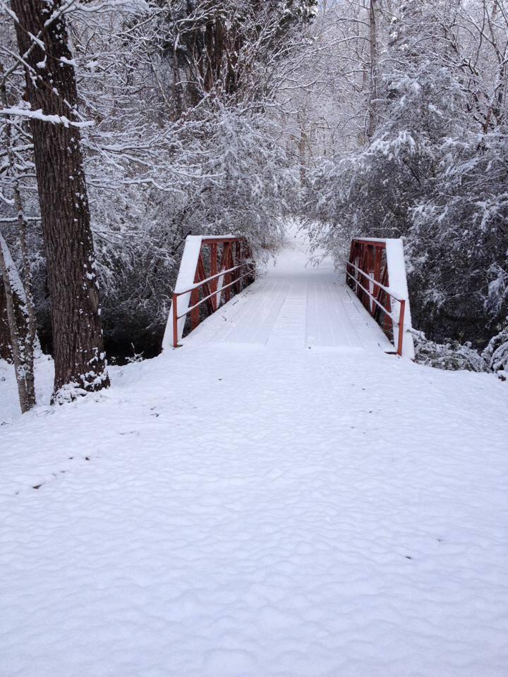 snow car bridge.jpg