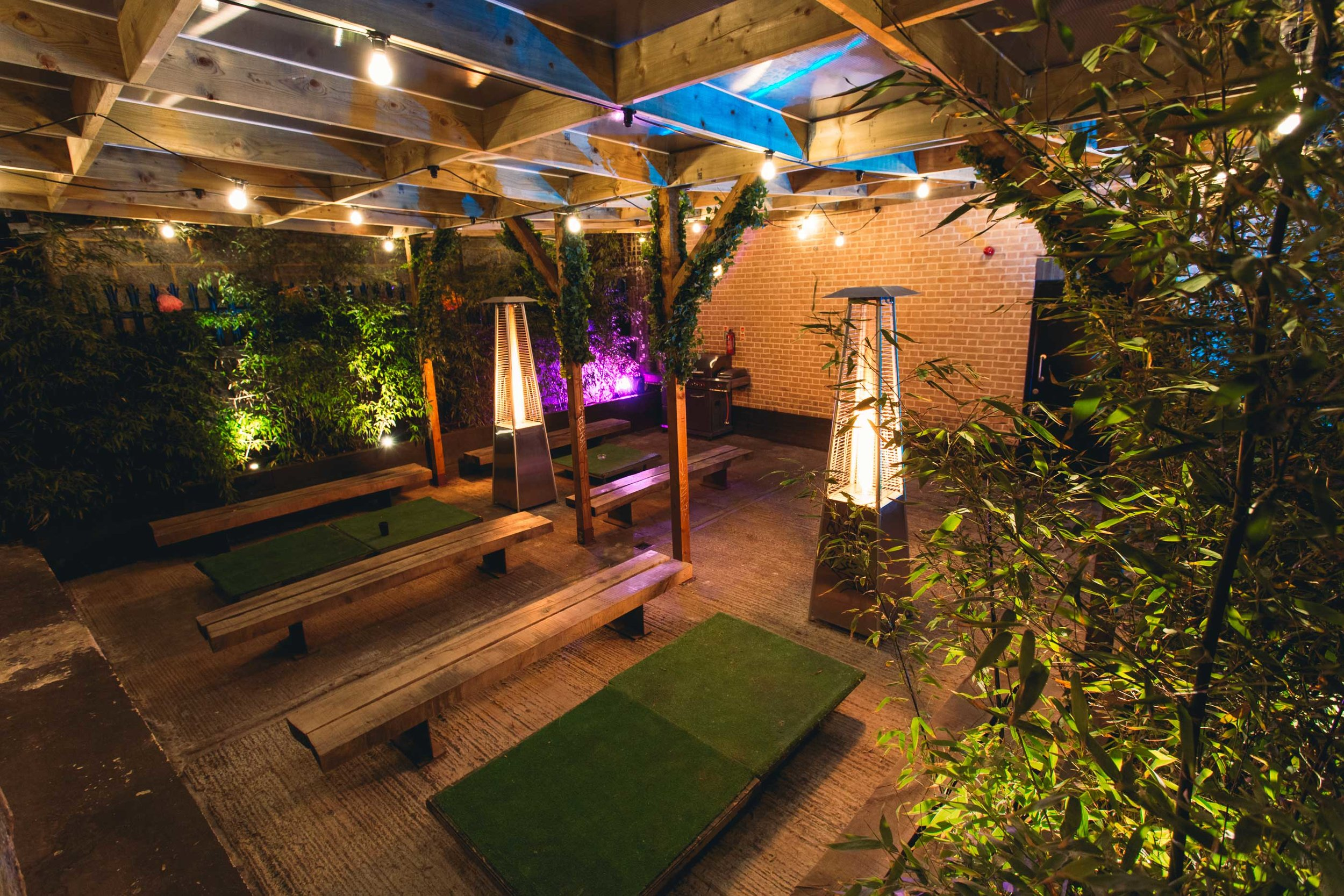 GardenNighttimeBackleft.jpg