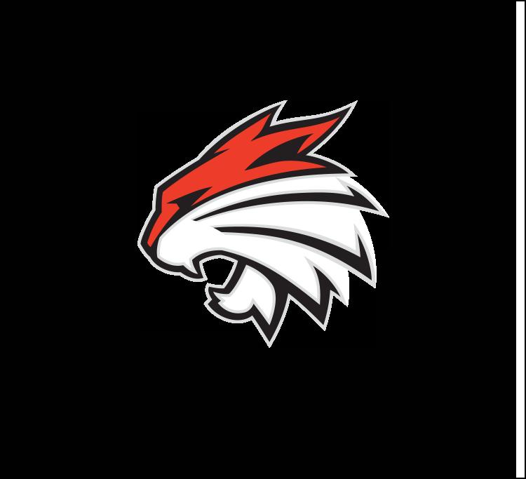 Bobcats sports logo