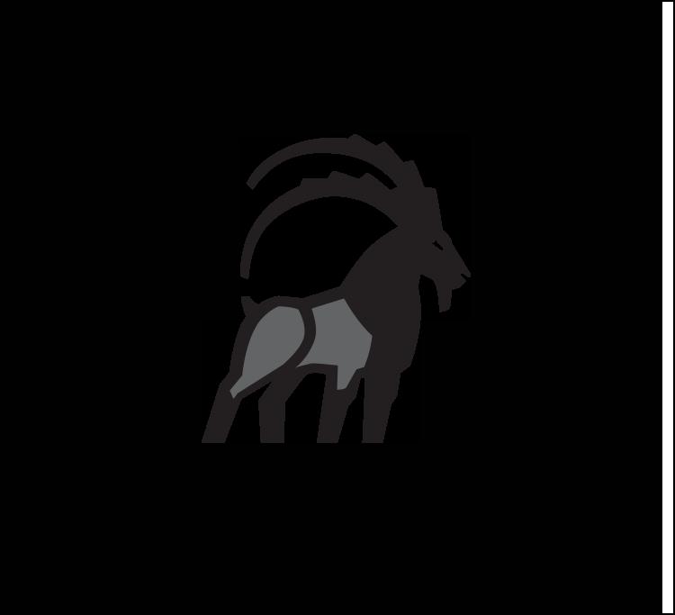 IBEX - Logo Mark