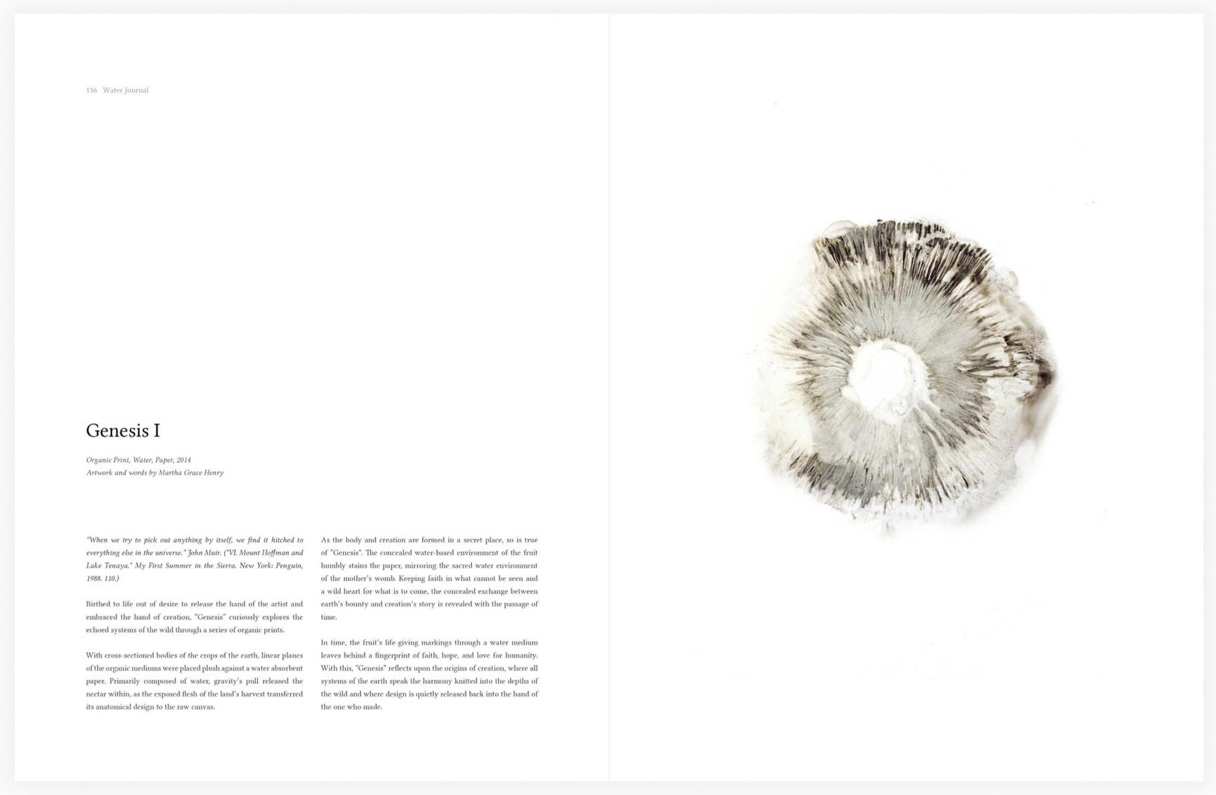 Water Journal Volume 1° — Martha Grace Henry (dragged) 2.jpg