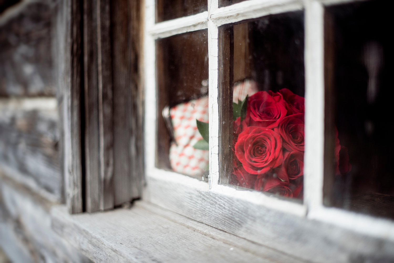 rose bouquet through the window in Fort Edmonton Park