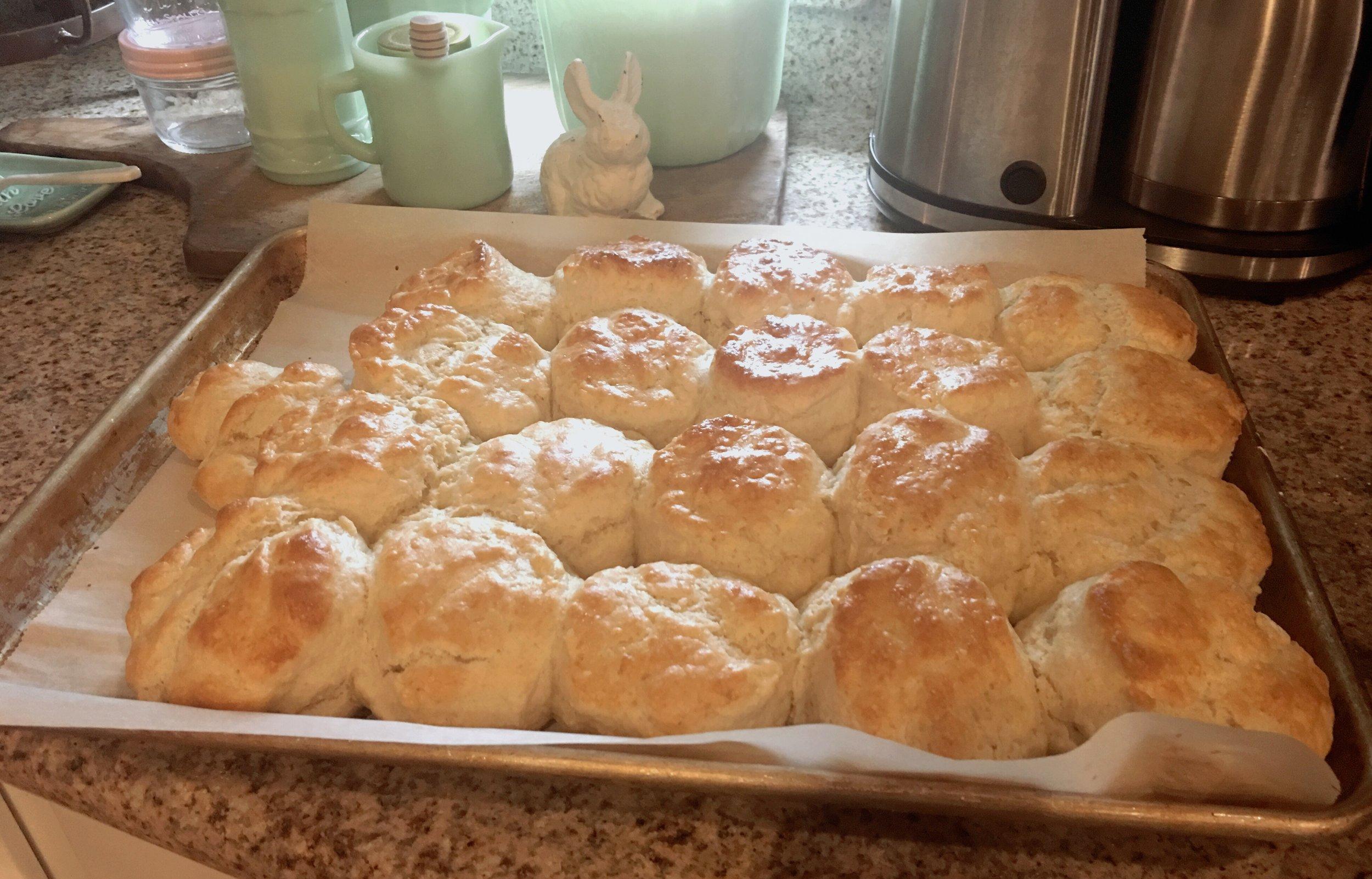 Haley Ogle/Biscuits