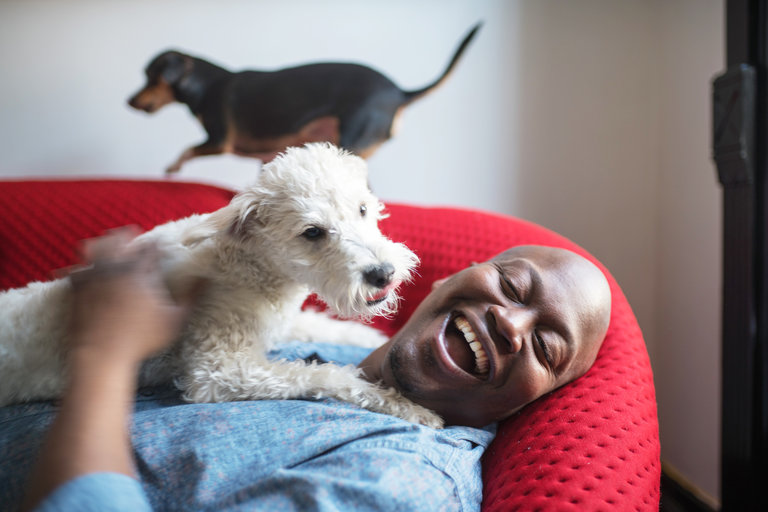 The actor Tituss Burgess with his dogs on a recent Sunday morning.  (  Image via Emon Hassan for The New York Times)