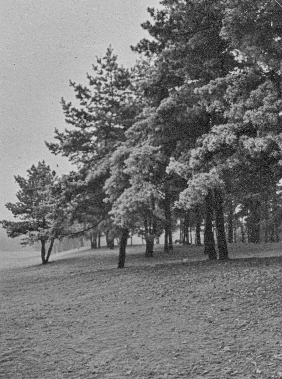 126_Scotts_1935-1942.jpg