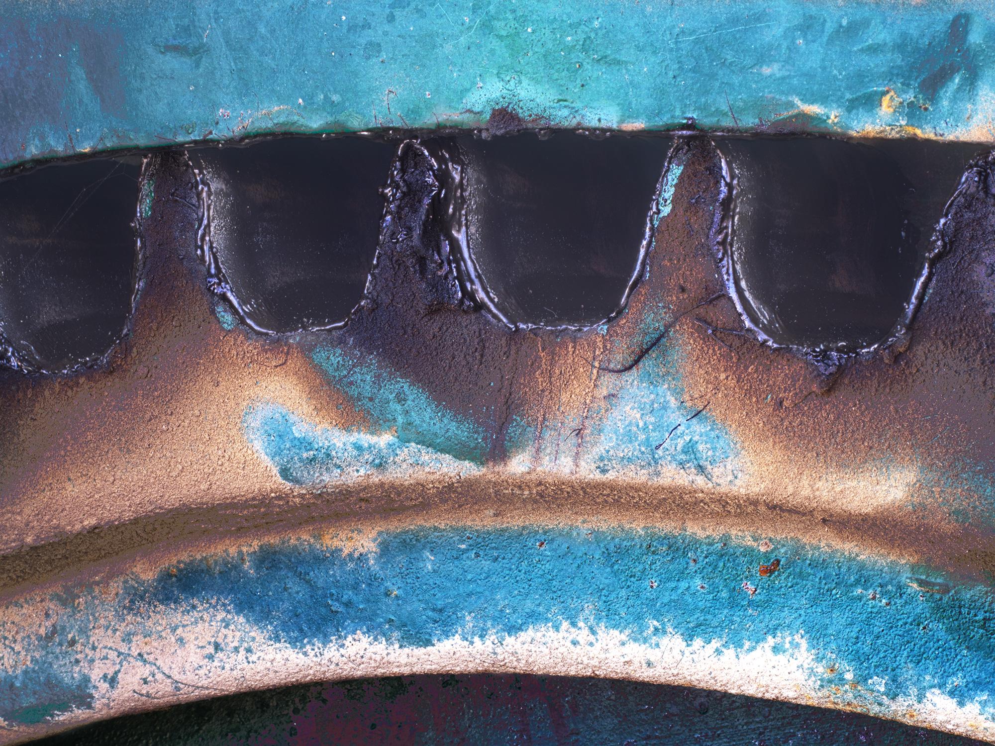 Baring_Teeth-C60_1175.jpg