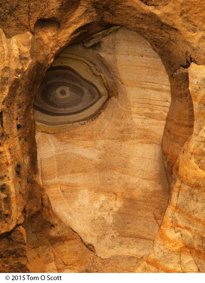 Eye_C60_1089.jpg