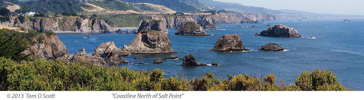 Coastline_North_of_Salt_Point_C20_3083.jpg