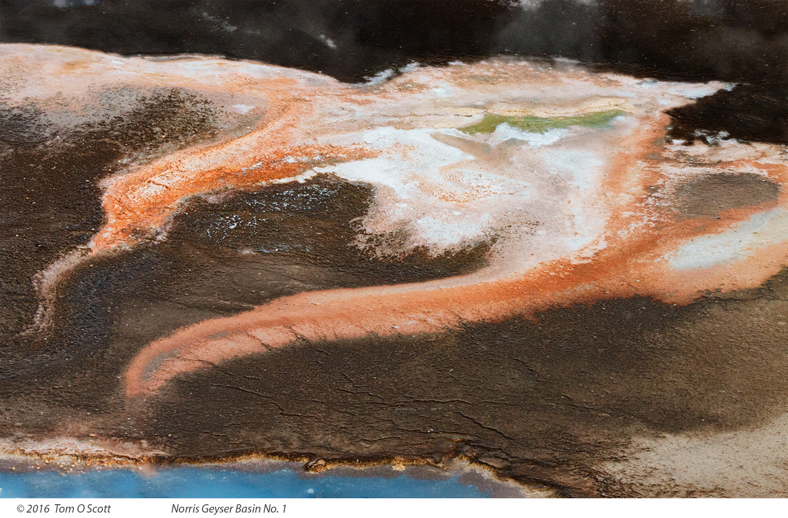 Norris Geyser Basin No. 1