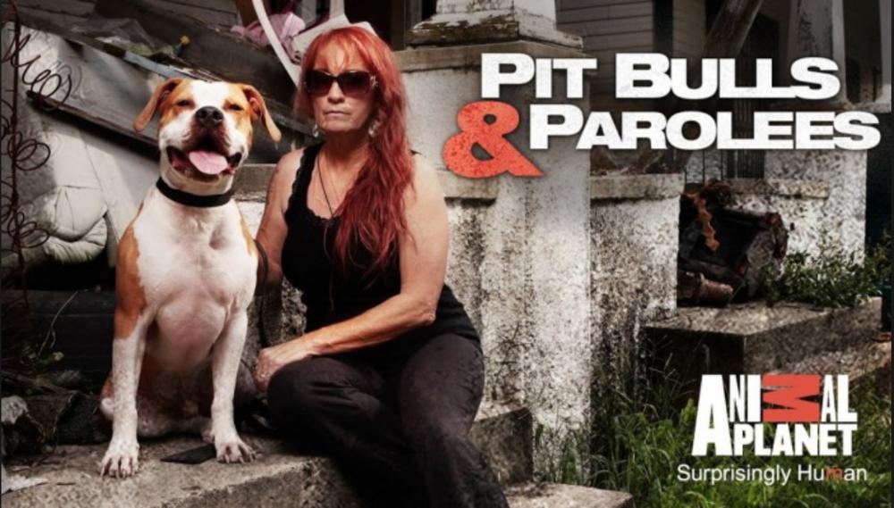 PIt Bulls & Parolees — 44 Blue Productions