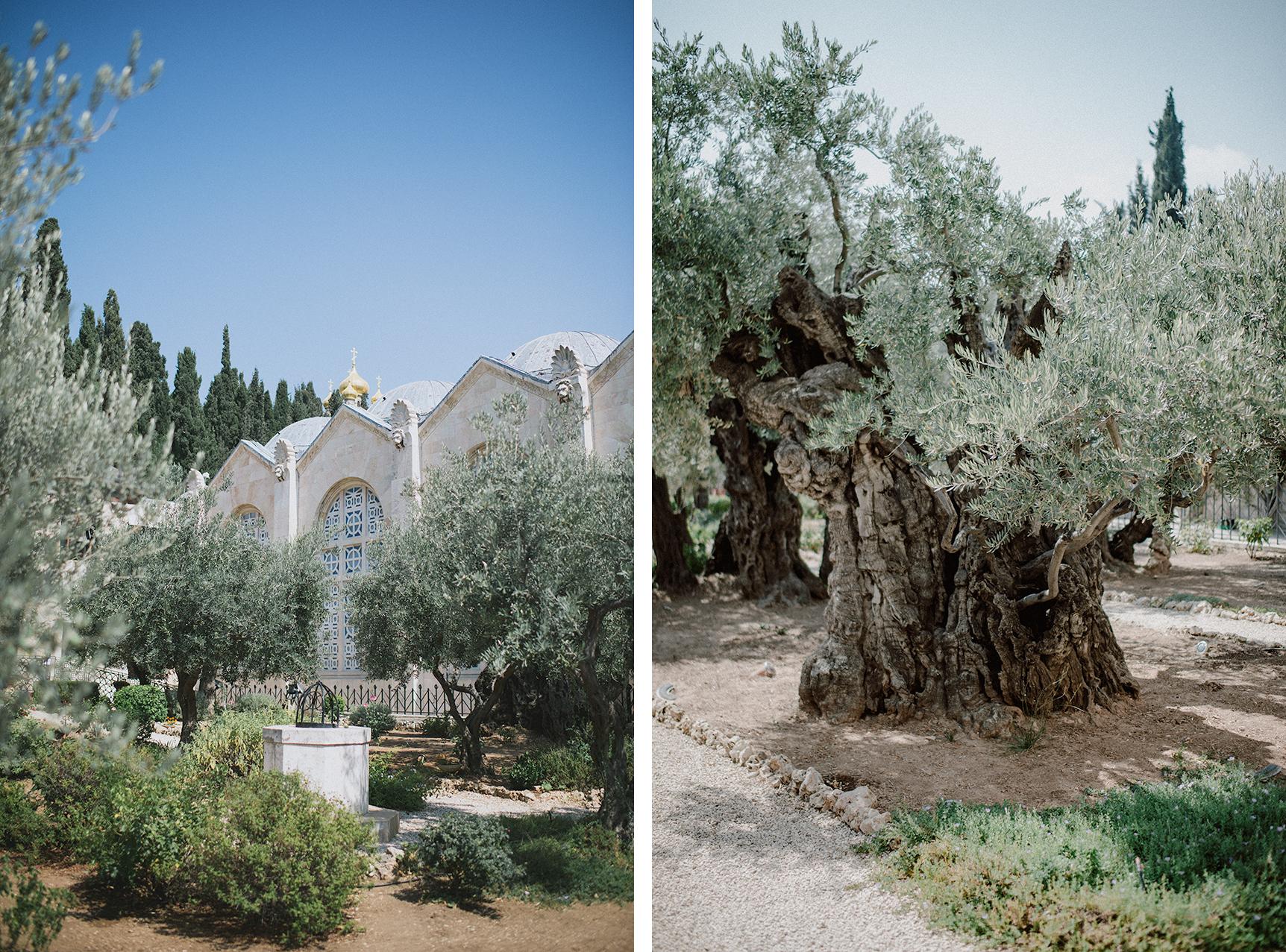 20180714_JERUSALEM_x002.jpg