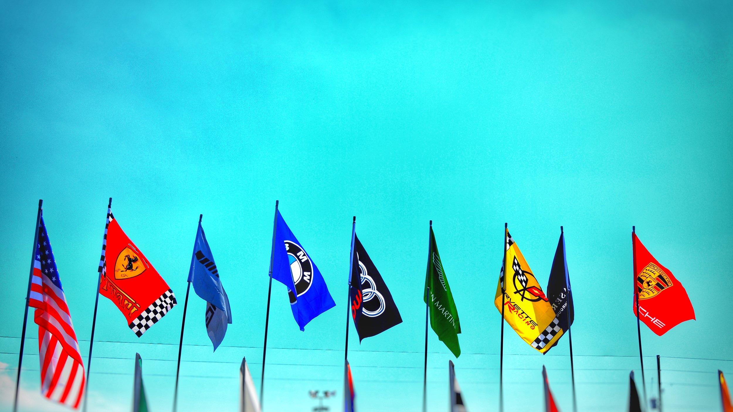 7. race flags.jpg