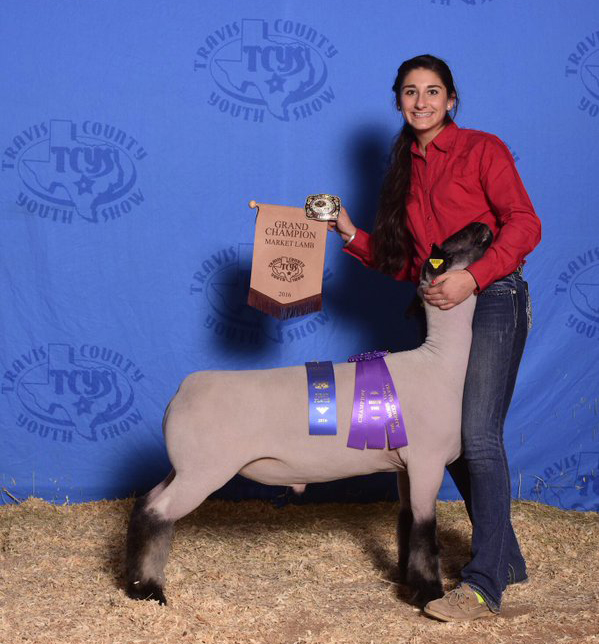 Emily Cotton - Grand Champion Lamb