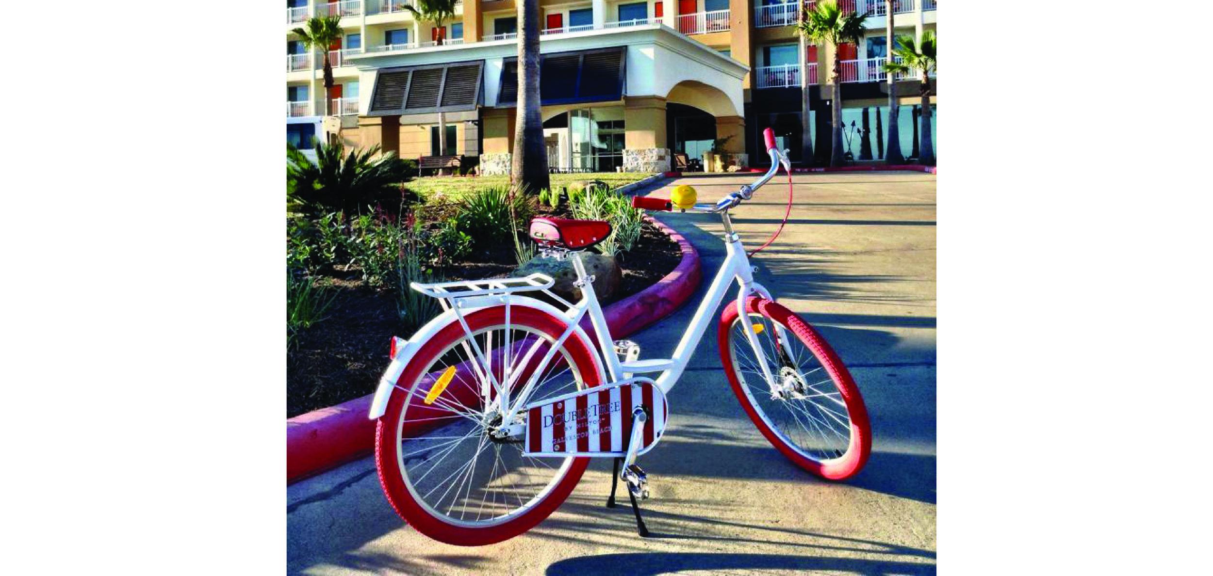 Custom Loaner Bike