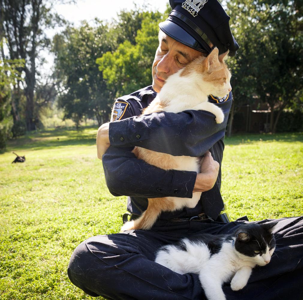 Cop & Cats