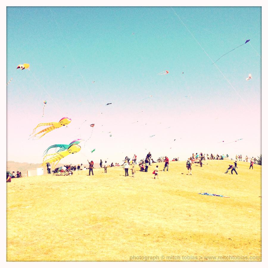 mitch_tobias_kite_festival_opt_3620