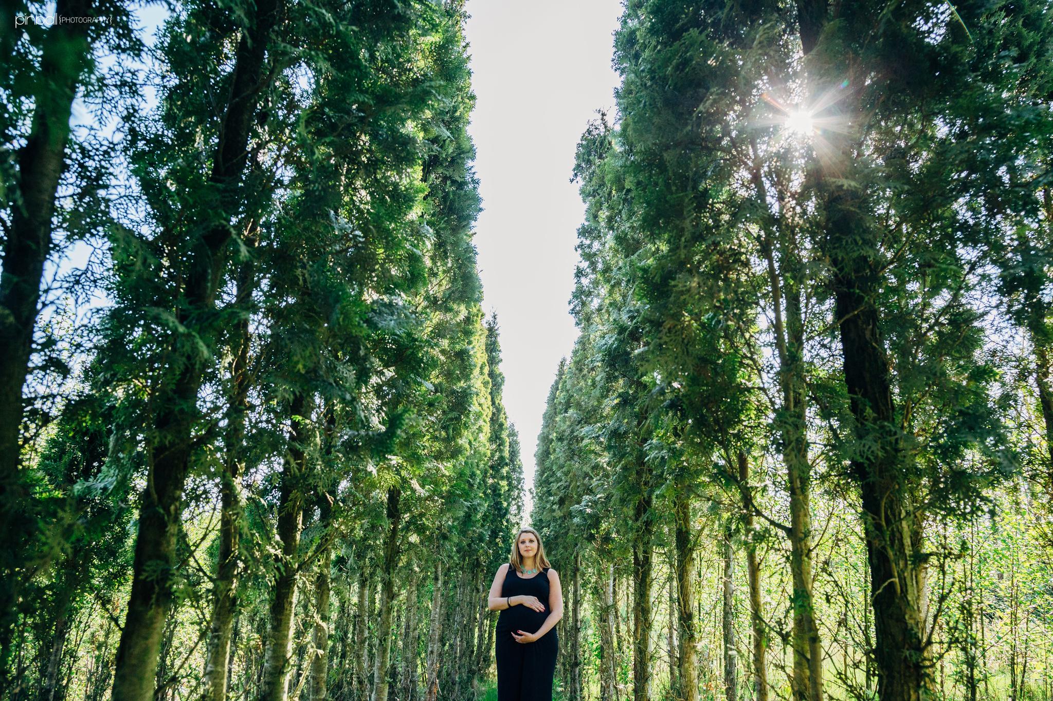 carly maternity trees-1.jpg