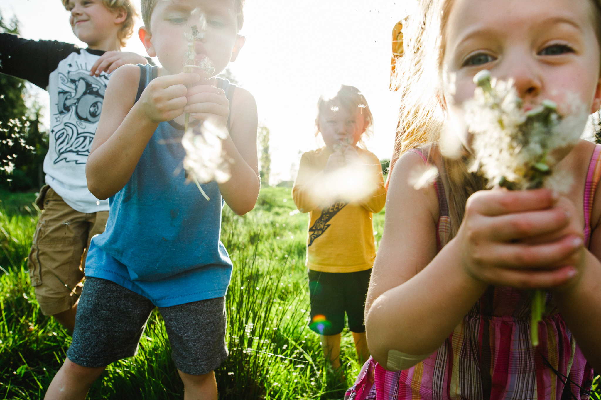 The kids blowing dandelions-1.jpg