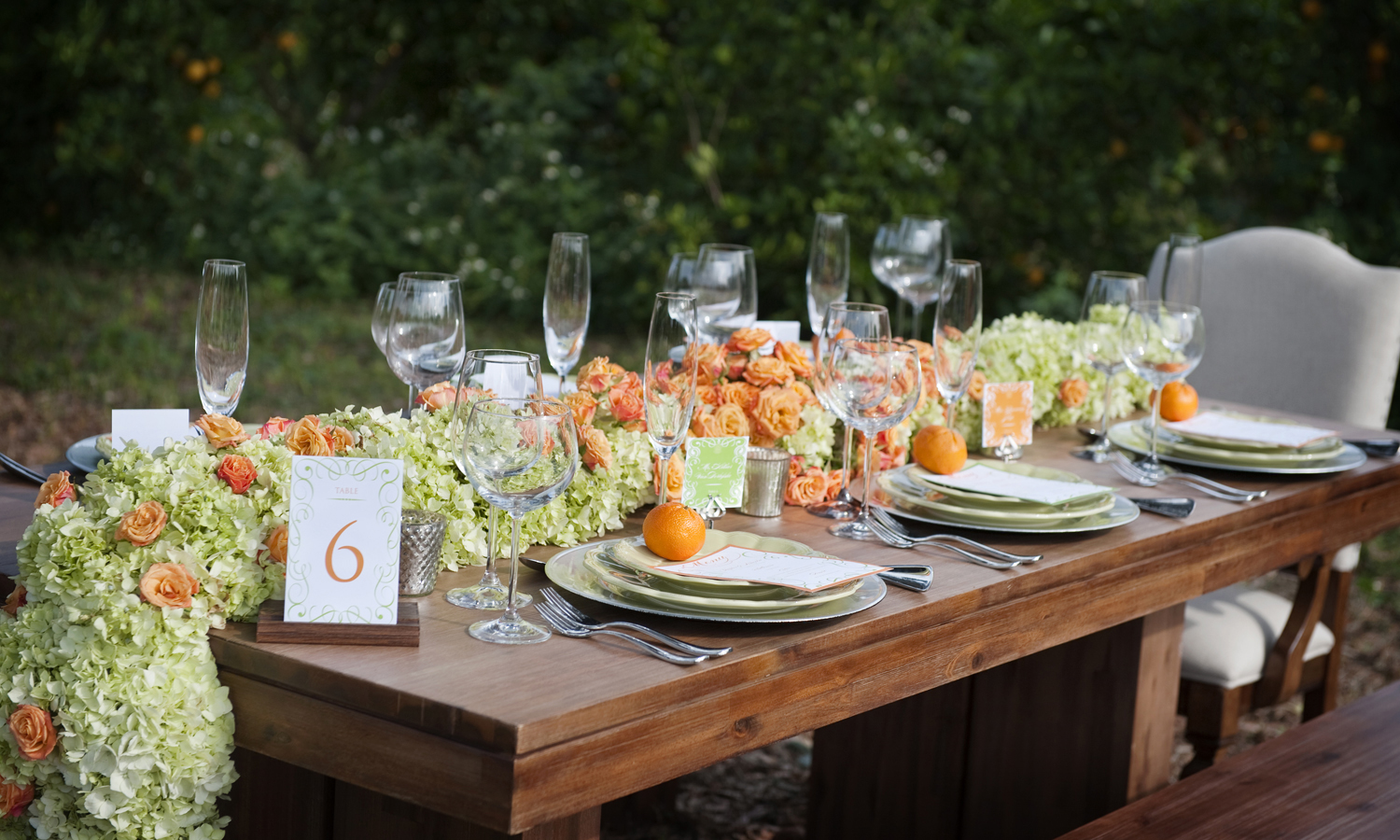 Wedding Photography: Damon Tucci | Wedding Reception: Showcase of Citrus