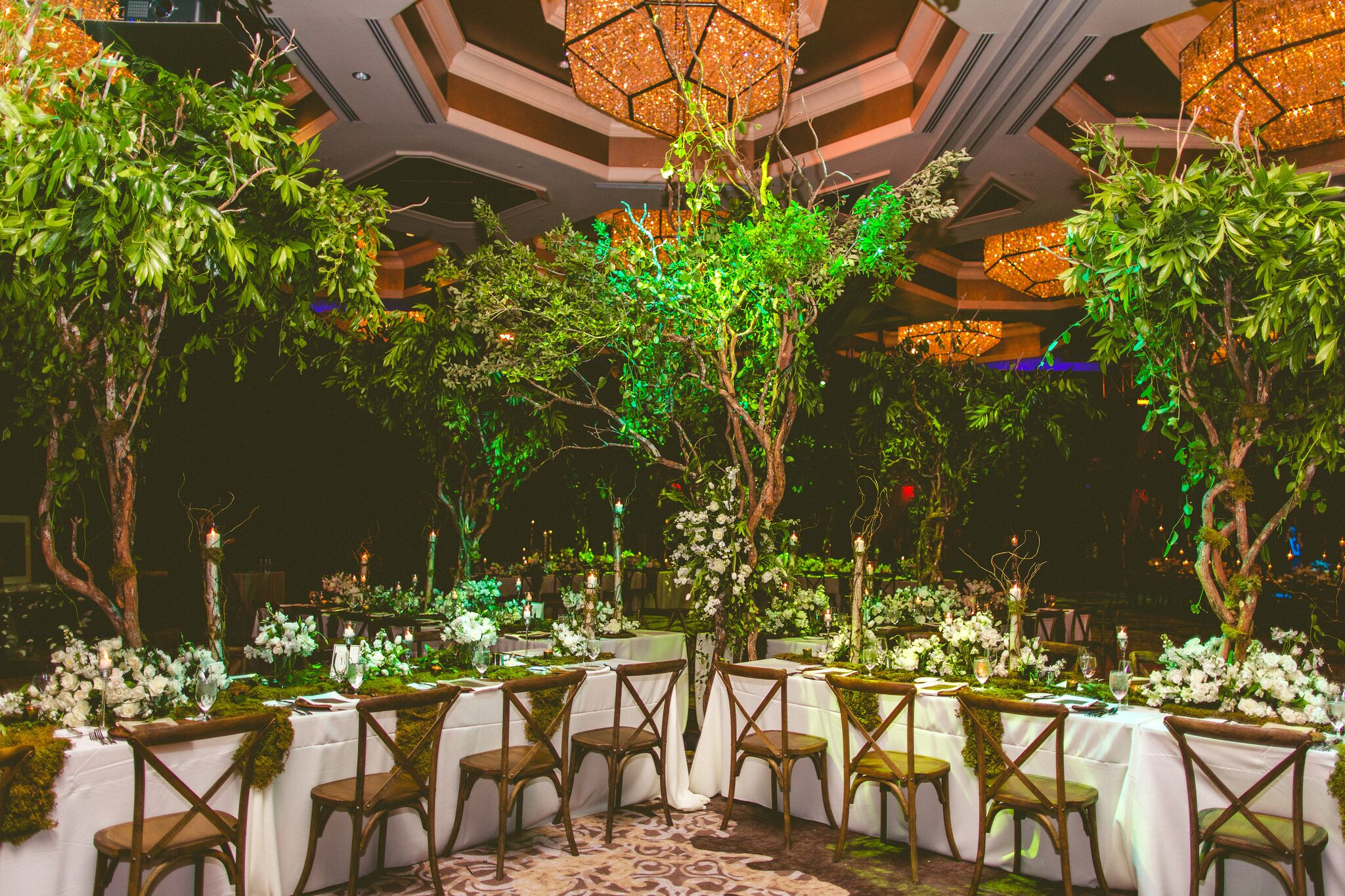 Tree Centerpieces & Branch Structures -