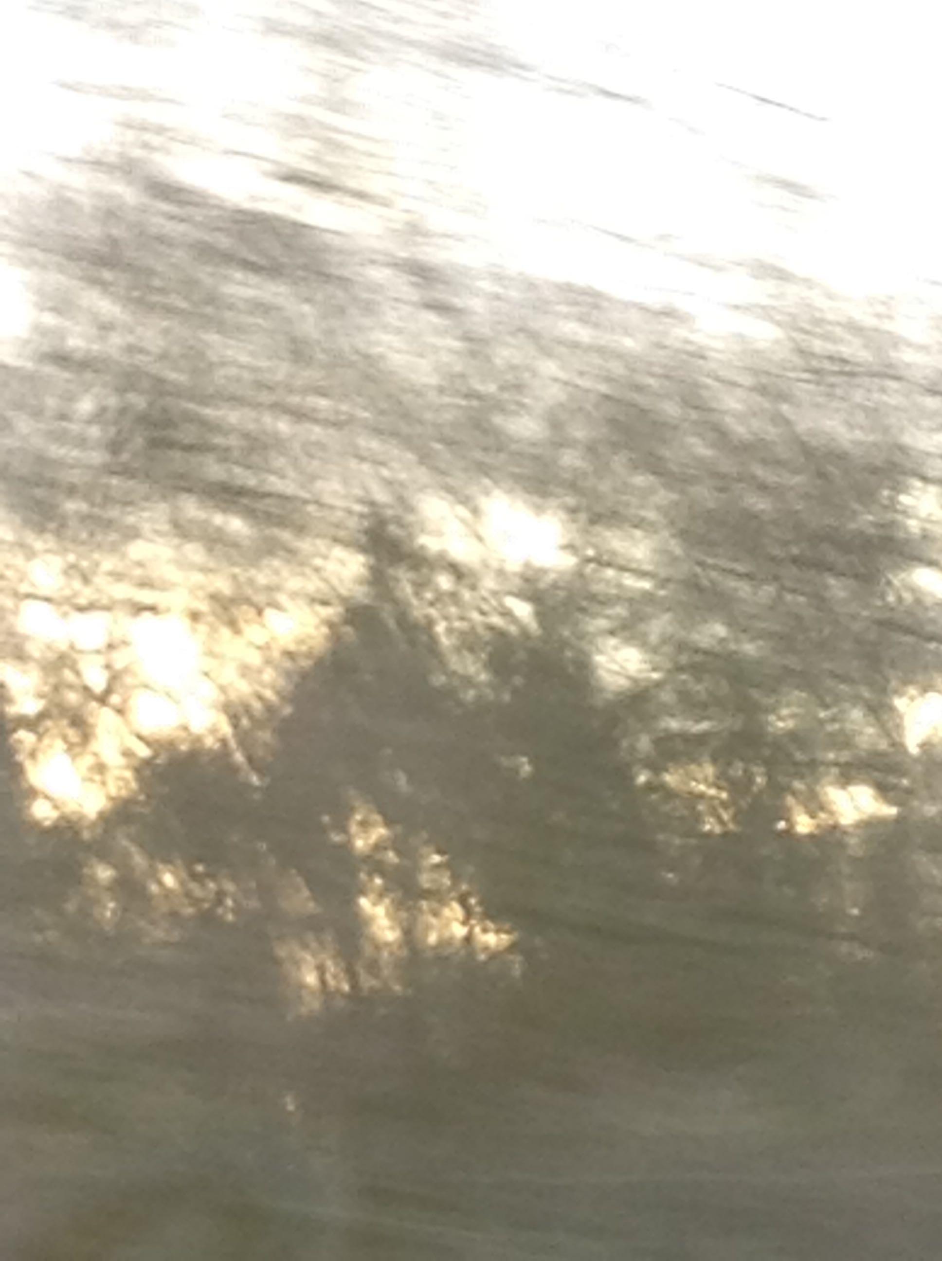 Greyish Sky.jpg