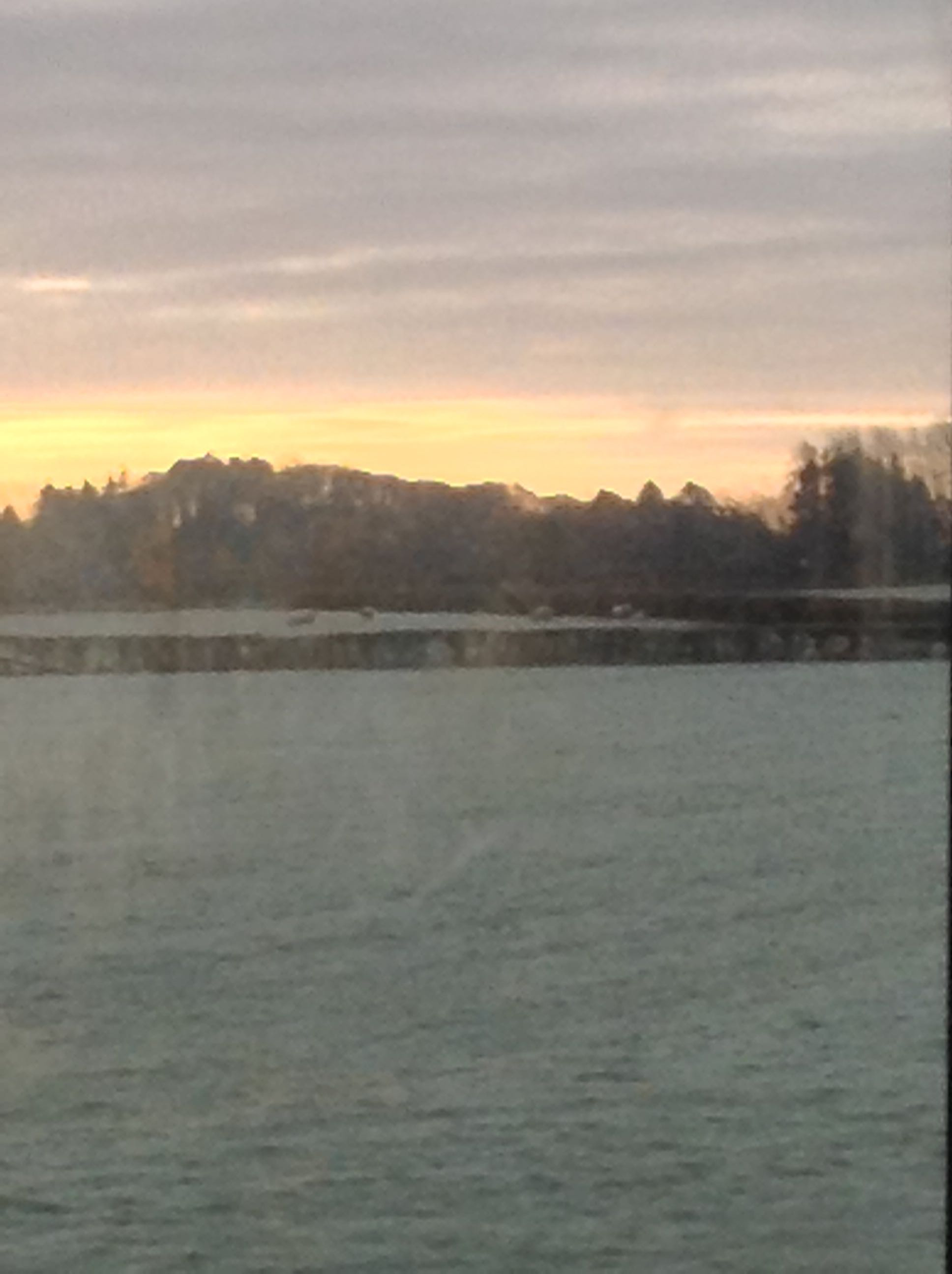 Sunset from Bus 2.jpg