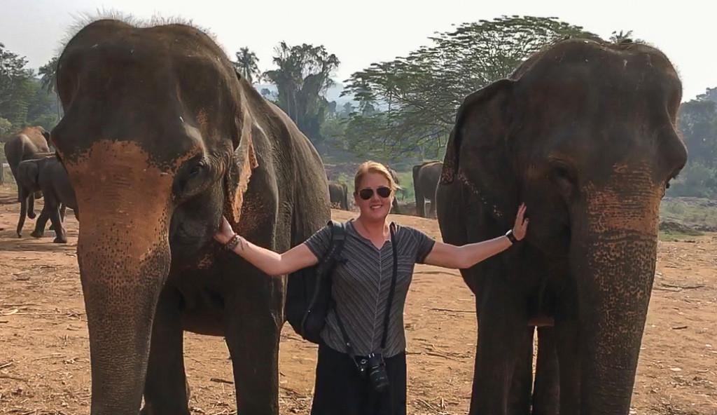Tess at the pinnawala elephant orphanage in sri lanka