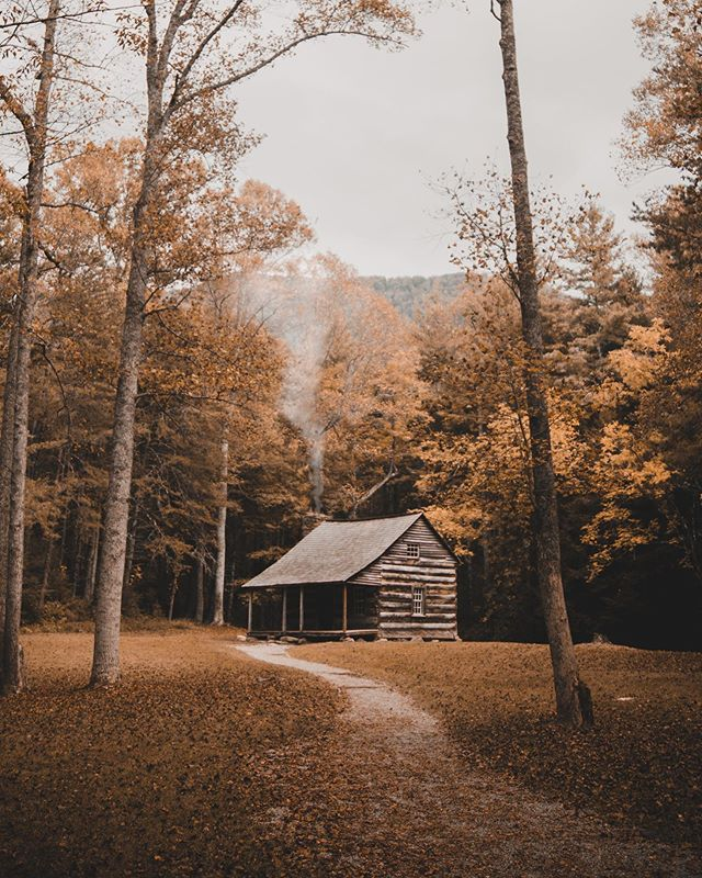 Game on 🍂  We've got some fall trips on the books including the @grainsandgritsfest with the @TN whiskeytrail Out in Townsend, TN AKA @peacefulsmokies. Best darn season, period. 📸: @mr.bootstraps