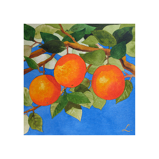 Oranges on Branch_wTexture.png