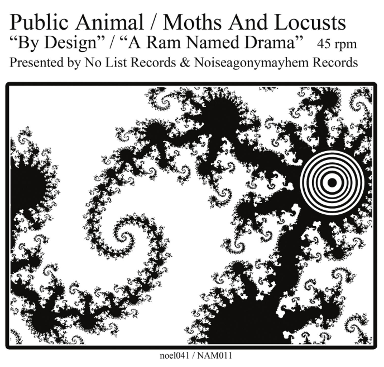"Split 7"" <br /> Public Animal // moths & locusts"