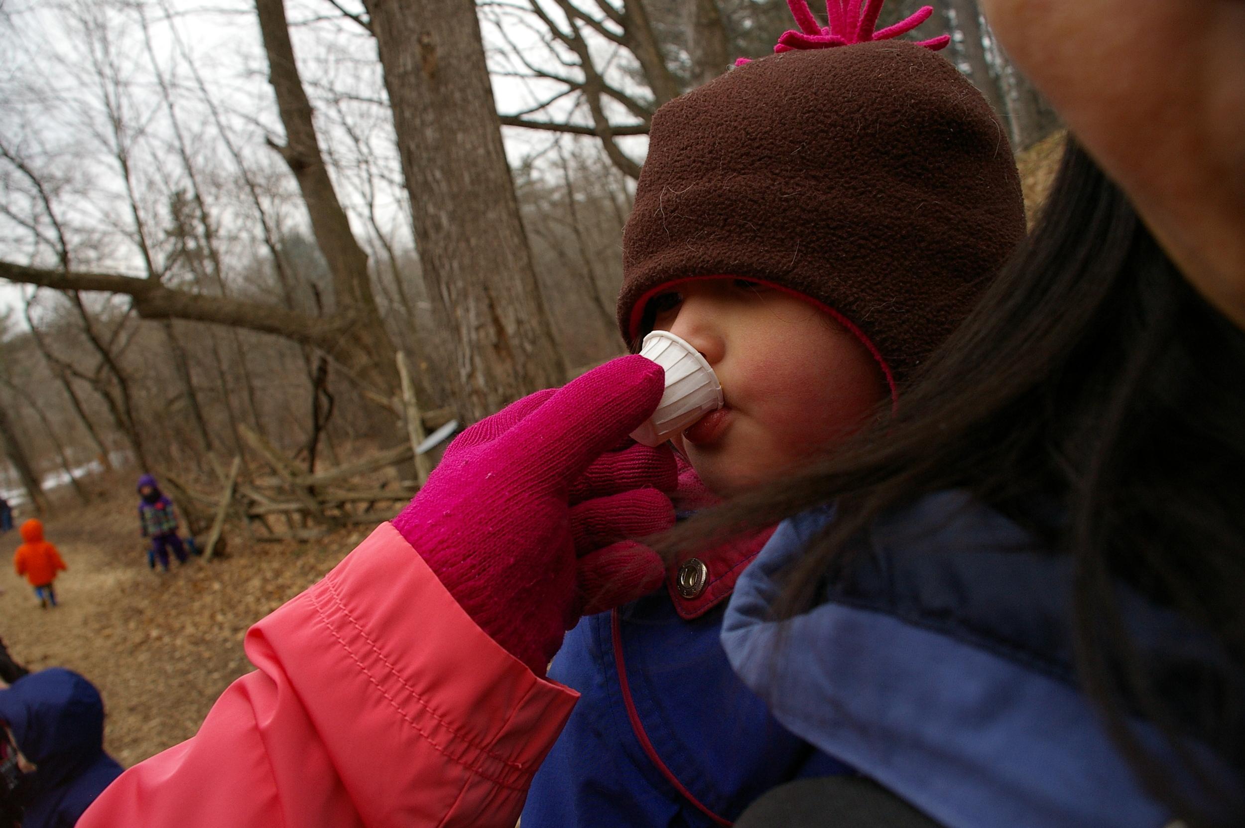 Mmm! A child tastes sap.