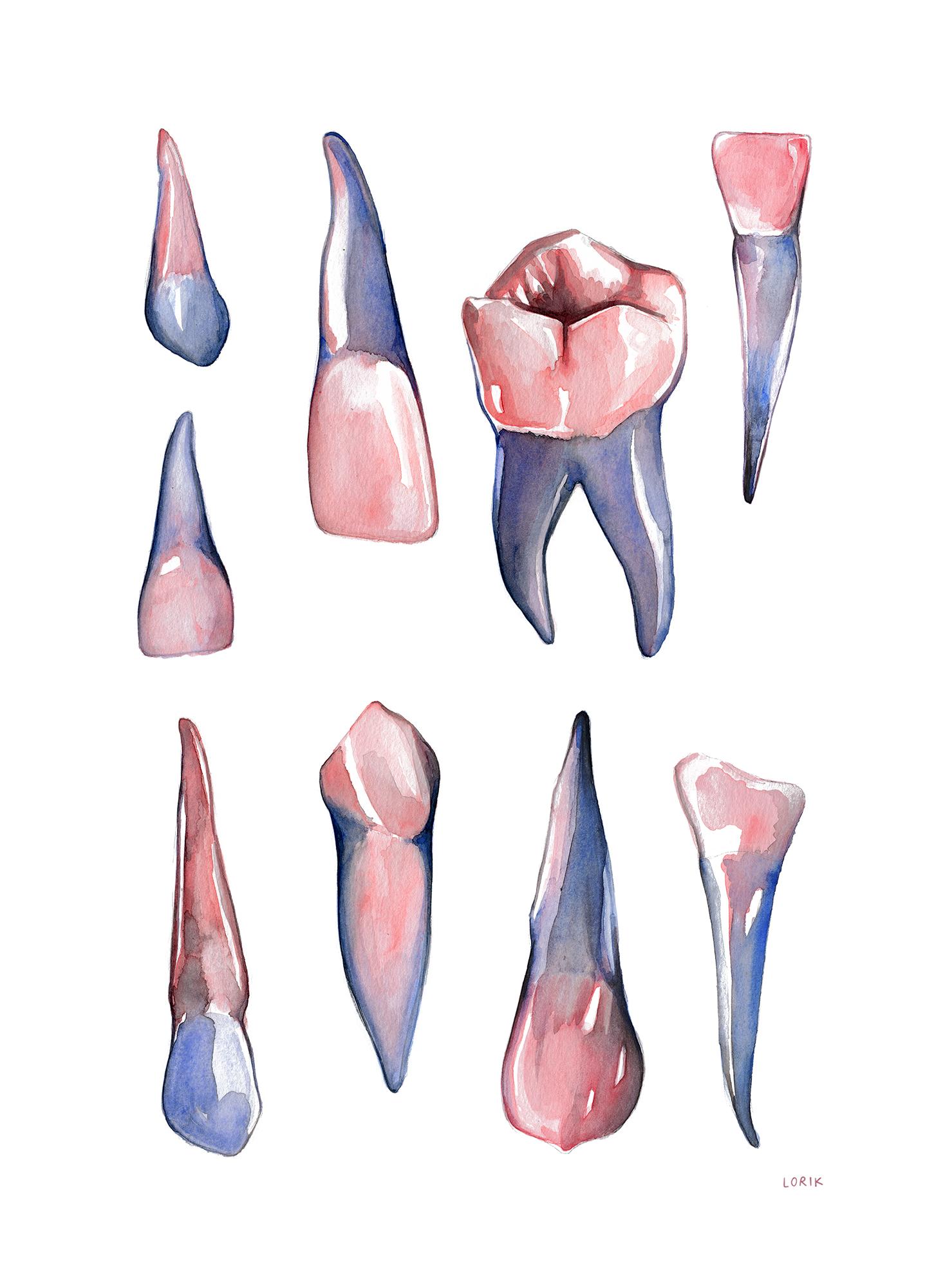 teethforhellololo.jpg