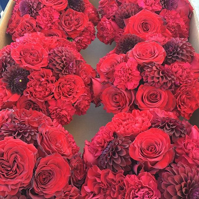 """🎶""""Red Red Wine You Make Me Feel So Fine.....🎶🎶😂 that was our soundtrack while making these beauties… and no we weren't drinking...it was 7am! 😂 @belfioredesigns  #BelFioreDesigns #BelFioreDesignsFloral #BelFioreDeisgnsBrides  #red #redcenterpieces #roses #dahlias #love #romance"""