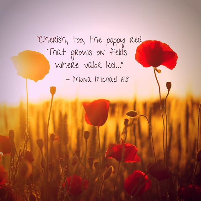 """""""In Flanders fields the poppies blow Between the crosses, row on row, That mark our place; and in the sky The larks, still bravely singing, fly Scarce heard amid the guns below.  We are the Dead. Short days ago We lived, felt dawn, saw sunset glow, Loved and were loved, and now we lie In Flanders fields.  Take up our quarrel with the foe: To you from failing hands we throw The torch; be yours to hold it high. If ye break faith with us who die We shall not sleep, though poppies grow In Flanders fields."""" Lieutenant-Colonel John McCrae 1915  Moina Michael's Response to Lieutenant-Colonel Johns McCrae's poem.... """"Oh! you who sleep in Flanders Fields, Sleep sweet - to rise anew! We caught the torch you threw  And holding high, we keep the Faith With All who died.  Cherish, too, the poppy red That grows on fields where valor led; It seems to signal to the skies That blood of heroes never dies, But lends a lustre to the red Of the flower that blooms above the dead In Flanders Fields.  And now the Torch and Poppy Red We wear in honor of our dead. Fear not that ye have died for naught; We'll teach the lesson that ye wrought In Flanders Fields."""" Moina Michael 1918"""