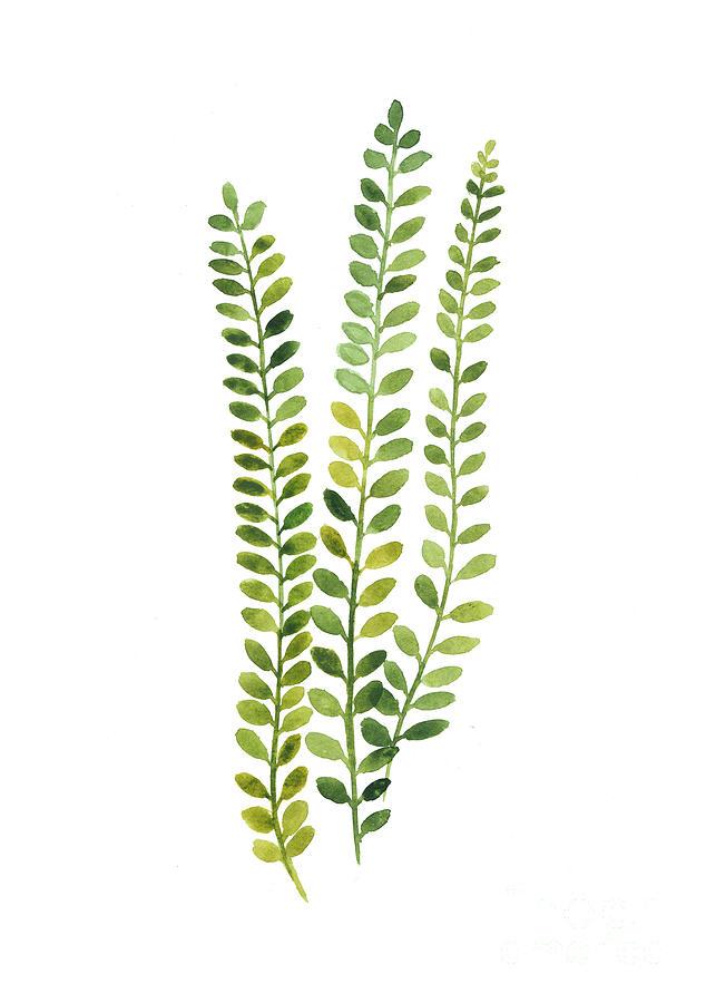 green-fern-watercolor-minimalist-painting-joanna-szmerdt.jpg