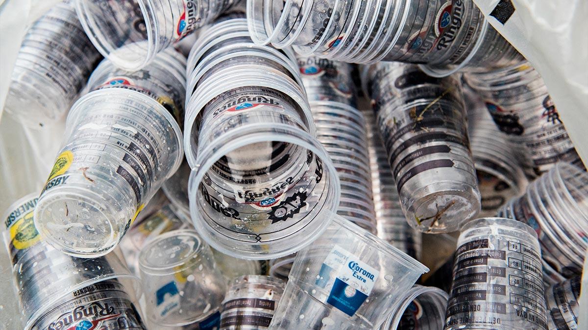 I år er alle ølglass på Øyafestivalen laga av PLA, eit materiale av overskot frå mais- og potetproduksjon. Foto: Øyafestivalen/Pål Billis
