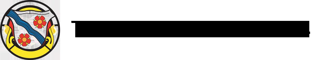 TTI Logo Transparent.png