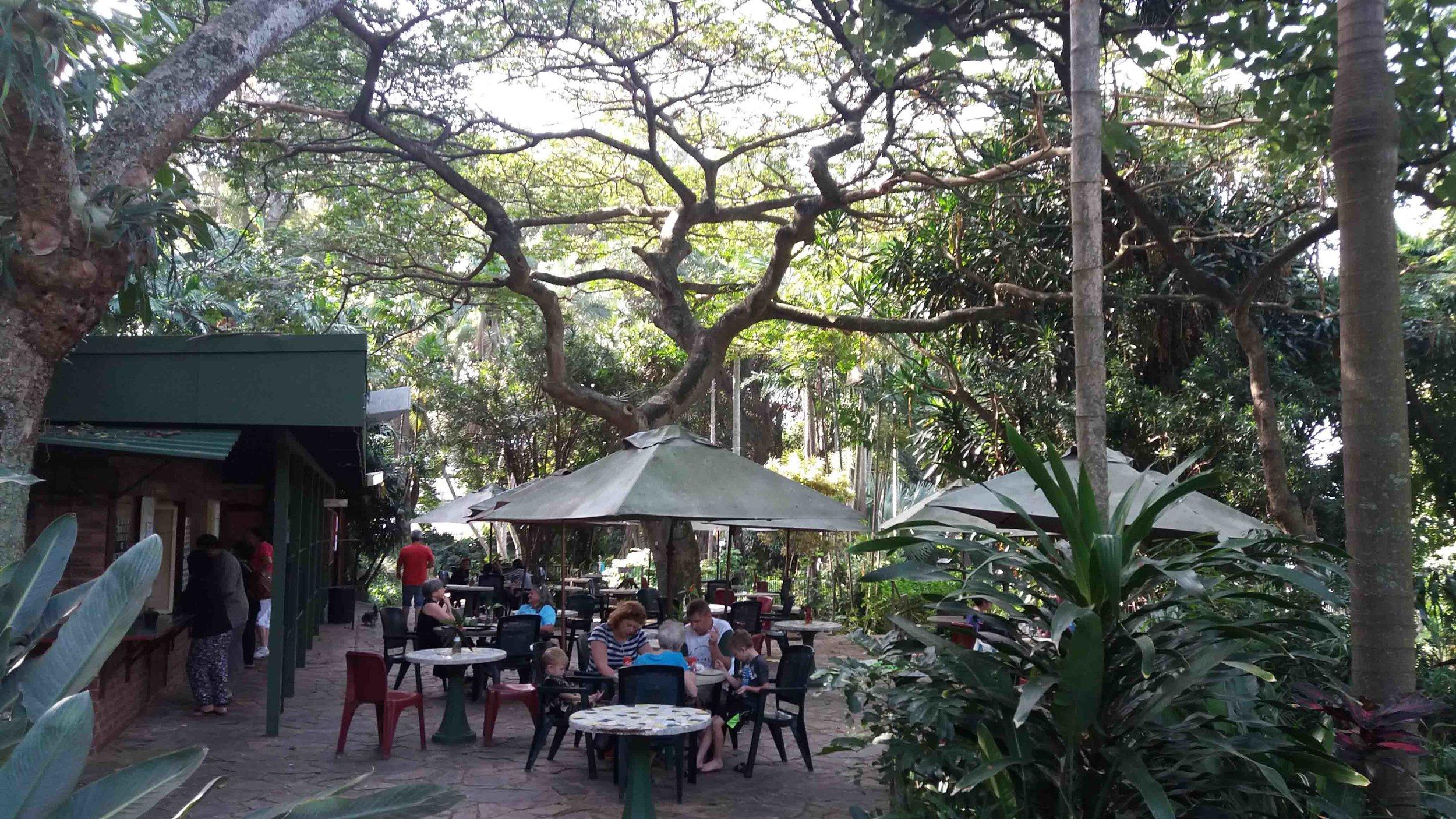 Tranquil Tea Garden