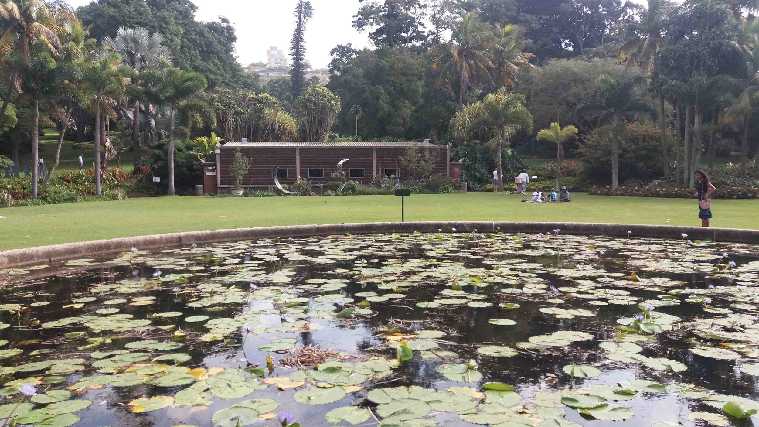 Lily Pond with Orchid House behind