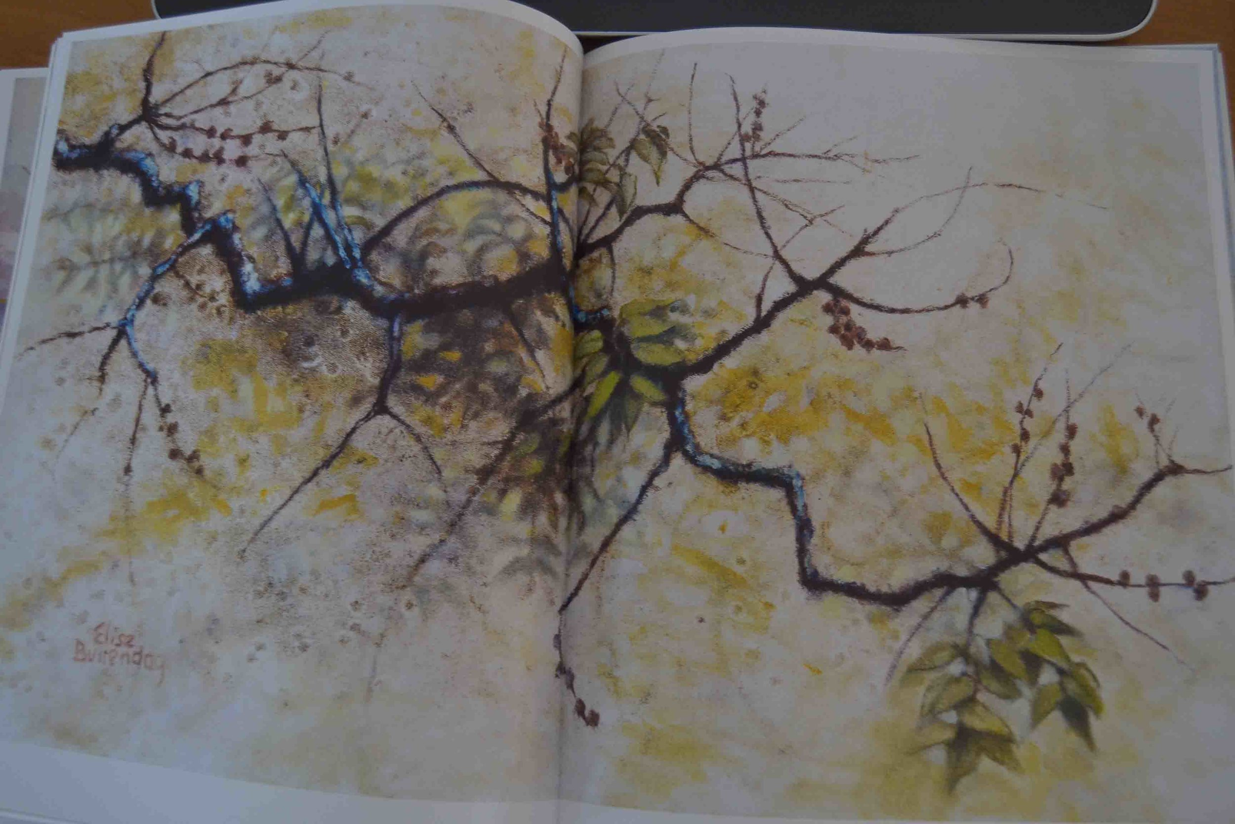 "Elise Buitendag Artwork in her Book ""Genesis of a Garden"""