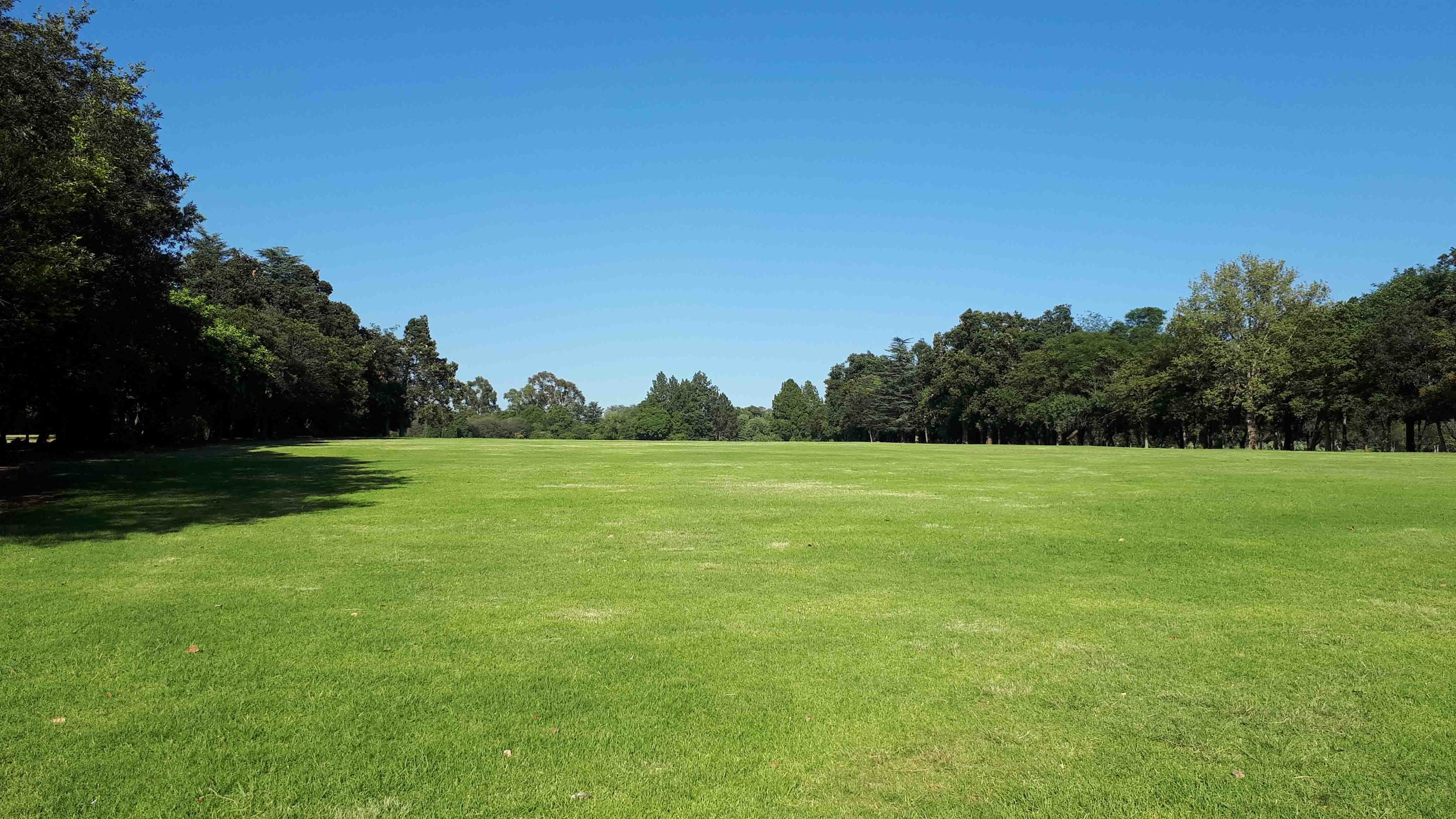 Large Lawn Areas at Emmarentia