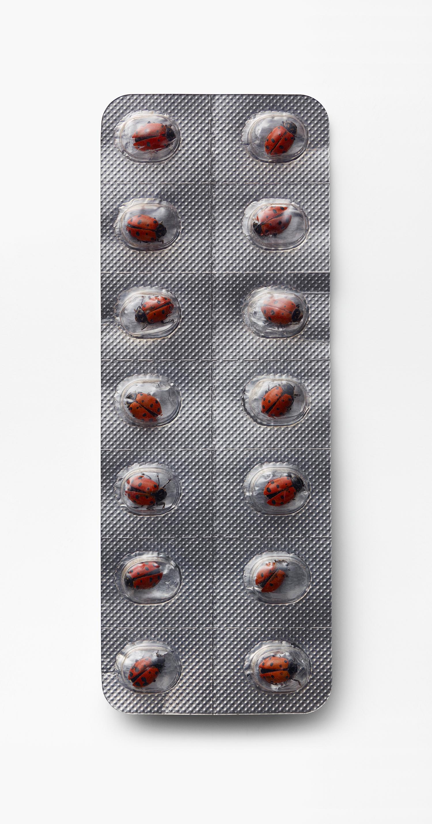 Ladybird Pill Packet