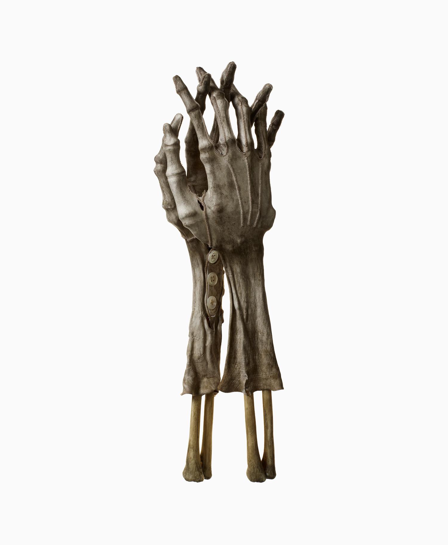 Shrunken Gloves 4
