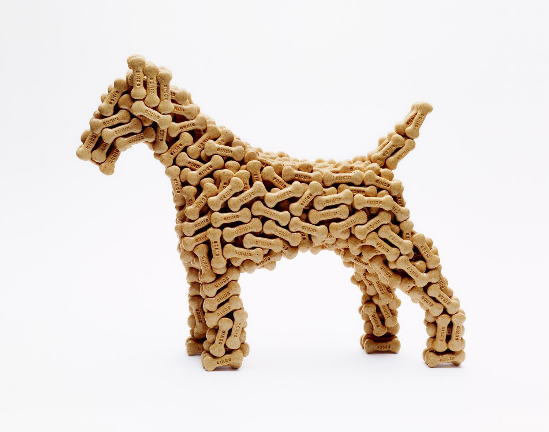 Dog Biscuit Dog