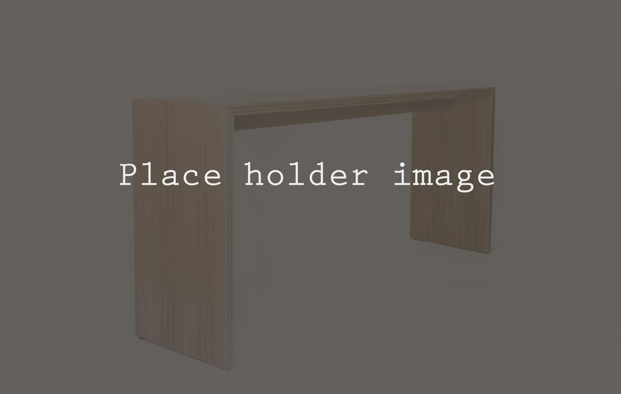 place holder image 1.jpg