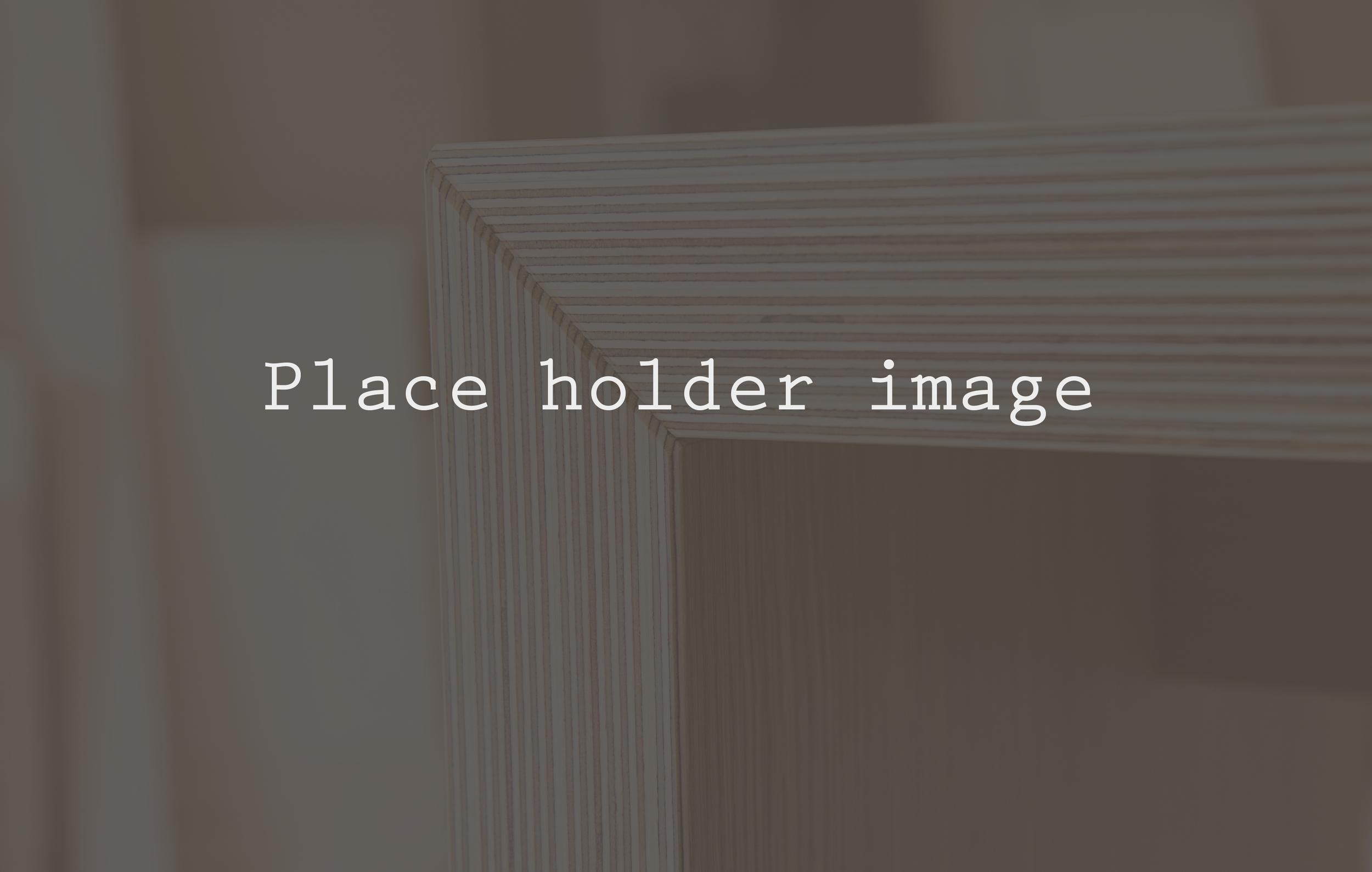 place holder image 3.jpg