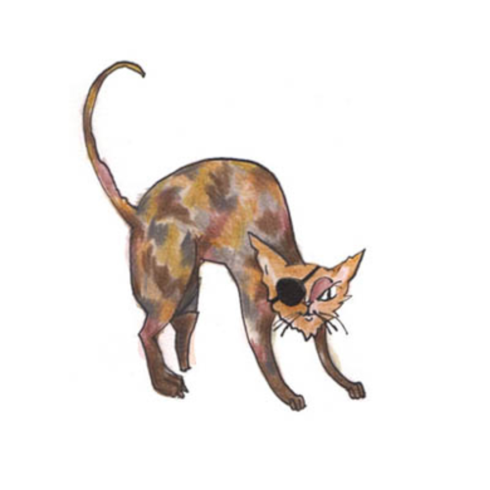 Cat Gang: Jimmi