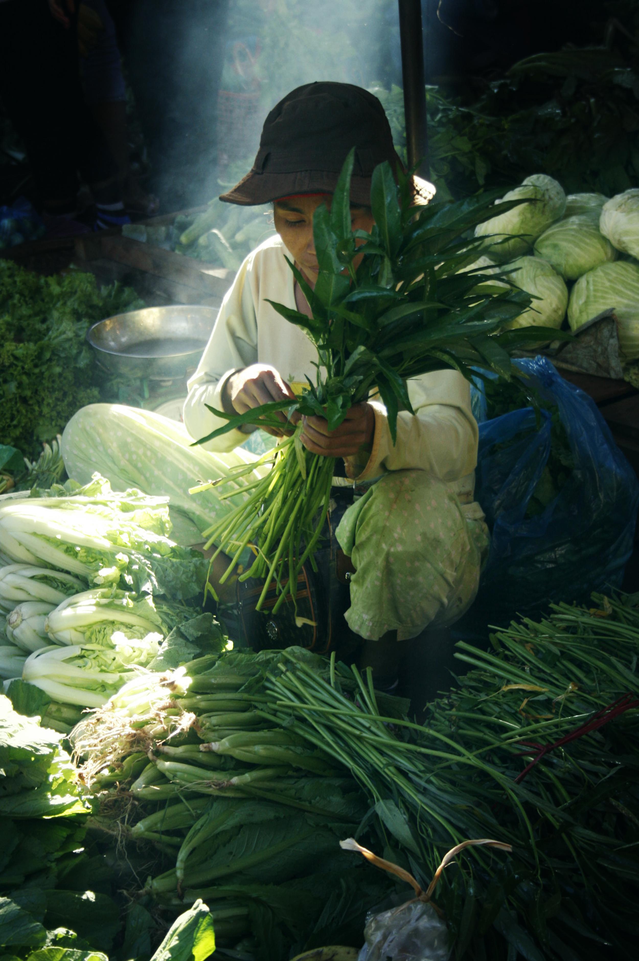 Ban Lung - Cambodia