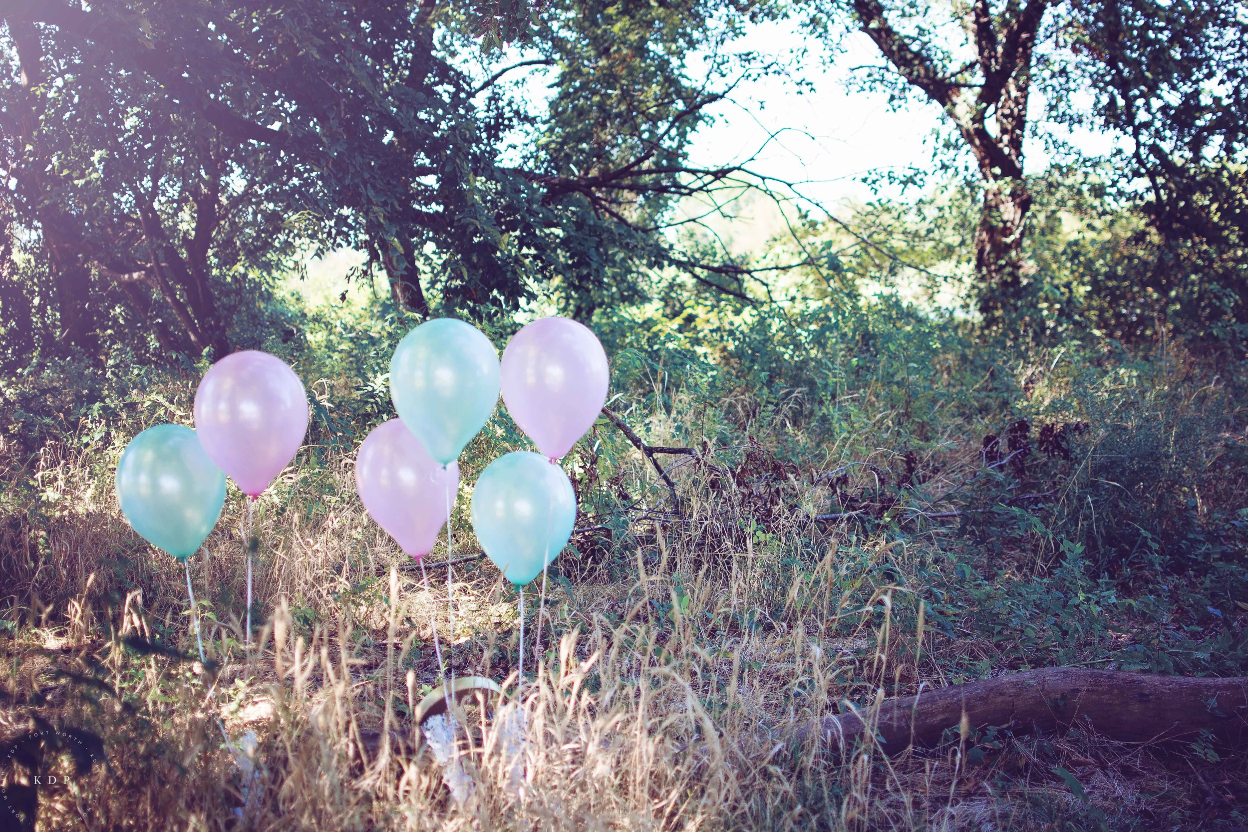 kimberly-danielle-portraits-birthday-1.jpg