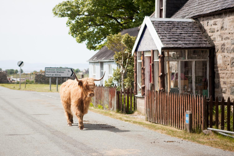 scotland_photo_tours_0007.jpg